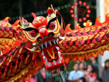 Dublin Chinese New Year Festival 2014